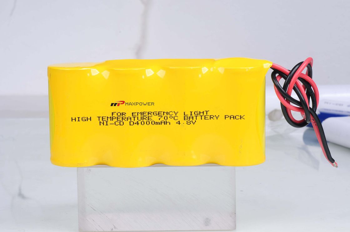 Emergency Lighting Battery NiCad D4000mAh 4.8V 70 Degree CE
